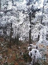 Le froid s'intensifie, entraînant de basses températures au Nord et au Centre