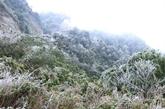 Chutes de neige dans la province de Lào Cai