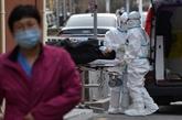 Les variants essaiment, le virus menace toujours plus