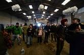 Une fête sauvage de 2.500 personnes au sud de Rennes