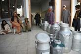 Entre combats et corruption, la laiterie Milko creuse son sillon