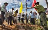 Bên Tre : planter dix millions d'arbres d'ici 2025