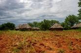 Aider les petits agriculteurs d'abord pour éviter les famines