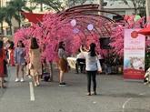 Foire 2021 des fleurs printanières de Phú My Hung
