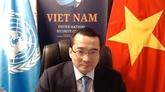 Le Vietnam apprécie les évolutions positives en Afrique