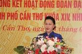 Les 75 ans des premières élections législatives commémorés à Cân Tho