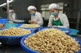 Pour exporter davantage des produits agricoles vietnamiens au Royaume-Uni