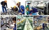 Des experts étrangers soulignent les atouts de la production du Vietnam