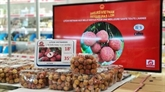 Faire valoir le rôle des Viêt kiêu dans la promotion des produits vietnamiens à l'étranger
