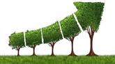 Vietnam et Japon signent un protocole d'accord sur une croissance sobre en carbone