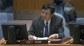 ONU : le Vietnam soutient le processus de paix et de réconciliation nationale en Colombie