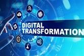 Dà Nang et le ministère des Finances pionniers de la transformation numérique
