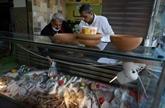À Gaza, la gastronomie méconnue des Abou Hassira