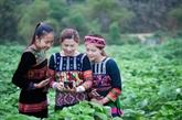 Aider les femmes ethniques à maîtriser les outils numériques