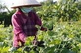 Restructuration d'un espace de développement pour l'agriculture