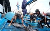 Développer une pêche responsable et durable