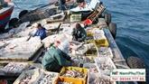 Le Vietnam œuvre pour accélérer les négociations sur les subventions à la pêche
