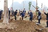 La Fête de plantation d'arbres du printemps 2021 lancée dans différentes localités