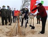 La Fête de plantation d'arbres du printemps 2021 lancée à Quang Binh