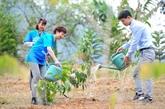 Fête de plantation d'arbres : action de protection environnementale