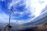 Le projet éolien offshore La Gàn fournira de lélectricité à plus de 7 millions de foyers