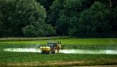 L'exposition aux pesticides augmente le risque de leucémie myéloïde aiguë