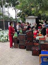 À la rescousse des produits agricoles de Hai Duong