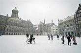 Les Pays-Bas frappés par leur première tempête de neige en dix ans