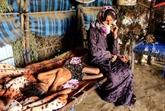 L'ONU espère récolter 3,85 milliards d'USD contre la famine auYémen