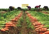 Au secours des agriculteurs