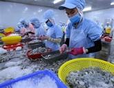 Le Vietnam devrait être le principal producteur mondial de crevettes
