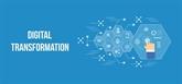 Les politiques doivent créer un moteur pour la transformation numérique