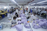 Promouvoir la coopération économique entre les entreprises allemandes et vietnamiennes