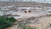 Les catastrophes accrues menacent les systèmes alimentaires, s'inquiète l'ONU