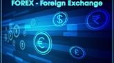 Des recommandations sur les risques lors de linvestissement sur le Forex