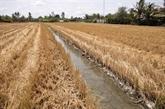 Lutter contre la sécheresse et la salinisation dans le delta du Mékong