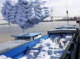 Le prix à l'exportation du riz vietnamien augmente de plus en plus