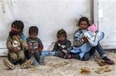 Conseil de sécurité : le Vietnam s'inquiète de la situation humanitaire en Syrie
