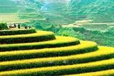 Lancement du Concours international de photos d'art au Vietnam 2021