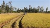 Améliorer le transport et le stockage des produits agricoles