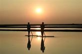 Inde : le changement climatique asphyxie des milliers de paludiers traditionnels