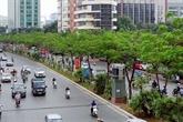 Le Vietnam lance son plan visant à planter un milliard d'arbres