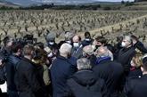 Vignes et vergers ravagés par le gel : Castex annonce un milliard d'euros d'aides