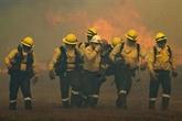 Afrique du Sud : incendie sur la montagne emblématique du Cap