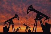 Pétrole : l'OPEP+ ouvre modestement les vannes à partir de mai