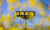 La Fondation Ikea promet un milliard d'euros en faveur du climat