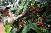 De nombreux potentiels pour promouvoir le commerce des produits agricoles Vietnam - Pologne