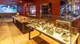 Le premier musée du thé du Vietnam se trouve à Dà Lat