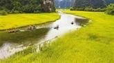 Ninh Binh développe l'agrotourisme