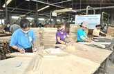 Produits forestiers : excédent commercial de plus de 3 milliards d'USD